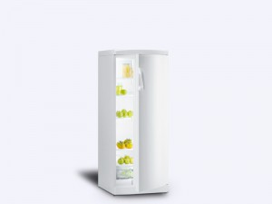 Fritider Gorenje-R-6295W