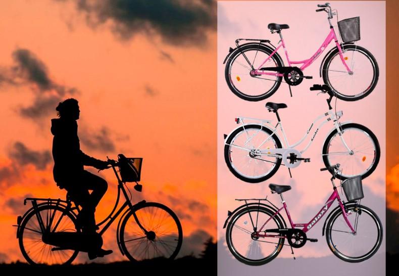 Pravi-bicikl-za-prave-damice